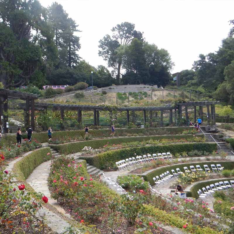 Berkley Rose Garden
